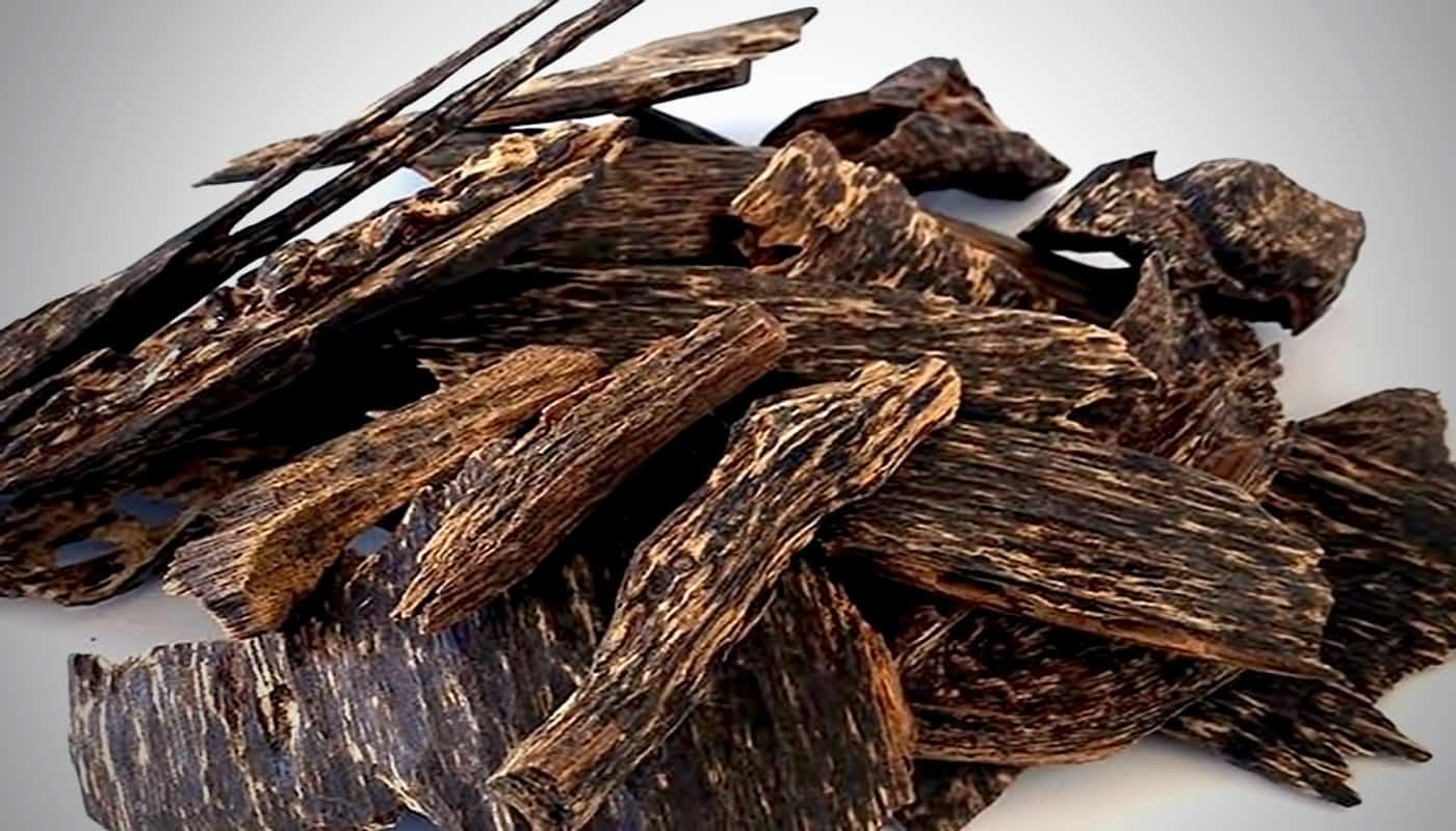 5 sản phẩm phổ biến được làm từ gỗ Trầm Hương - hanhtrinhtramhuong.com