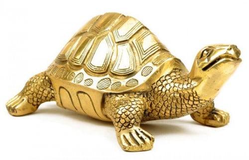 tượng rùa